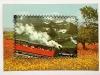 rkaartrodebahn