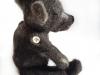 grote donkerbruine beer van Labradoodlewol