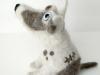 hondje van drie katten, profile