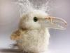 vogeltje van schapenwol, krabsnavel